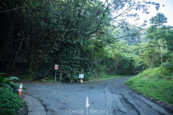 chases hawa-21