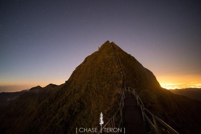 chases hawa-890