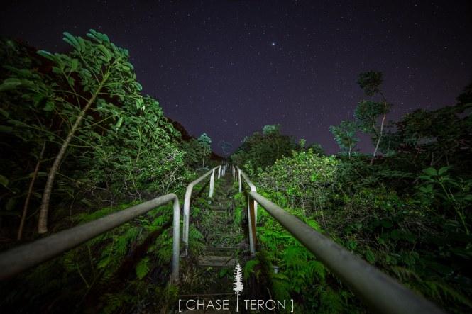 chases hawa-897